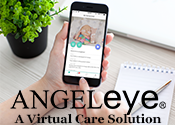 Angel Eye Cameras