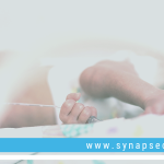 Synapse Spotlight: Paige Church talks identifying the behavioral phenotype of prematurity